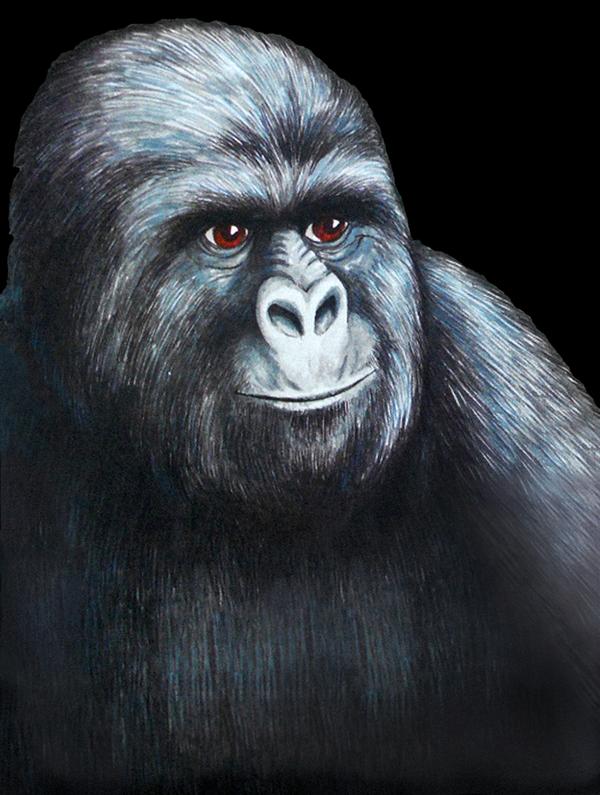 Memes de memegenerator - Página 2 Well+here+s+the+original+Gorilla+Munch+that+I+used+_67c9aaab2e861918a6bec56c21427cd8
