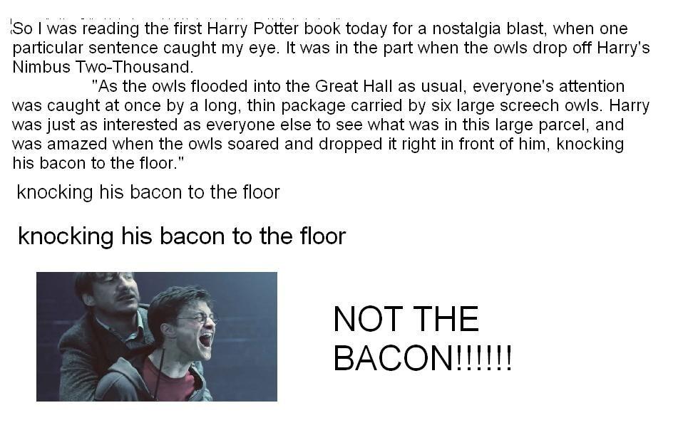 Harry Potter Book Excerpt : Harry potter excerpt