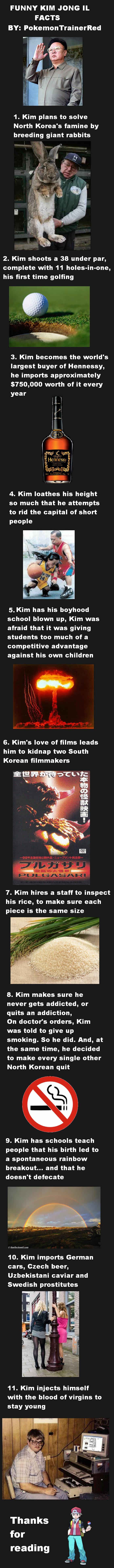 11 Funny Kim Jong il Facts. 11 Funny Kim Jong il Facts.. <---------- Giant rabbits you say? funny kim jong il facts