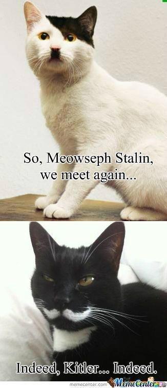 :). . Stalin, we meet siv, .
