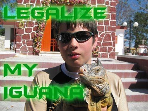 420 regenerate it. .