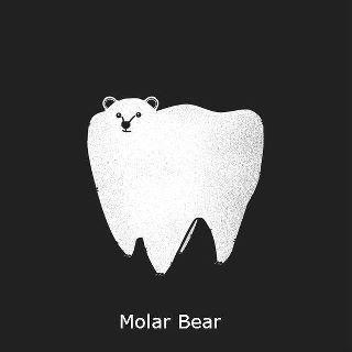A Pun. . Molar Bear