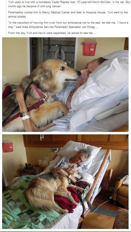 "A Dying Man's Wish. . an IMI "" ftper.. Sad story is sad ;("
