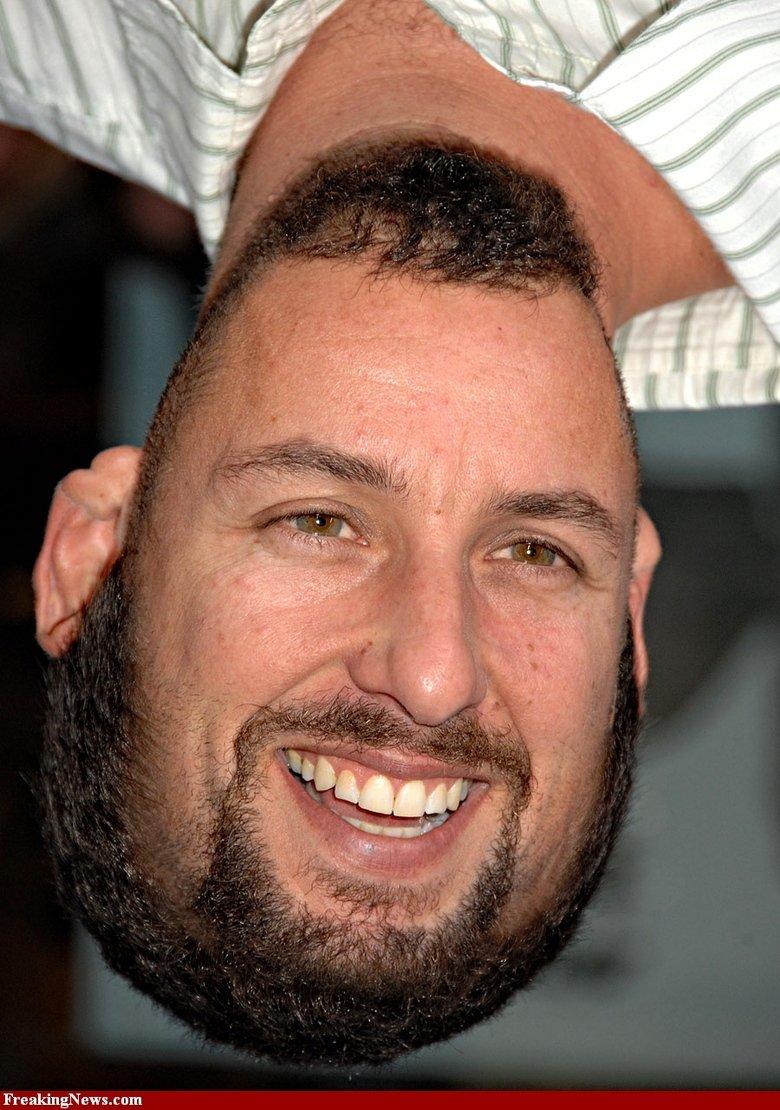 Adam Sandler upside down, upside down.. ¿ǝɹǝɥʇ pıp ı ʇɐɥʍ ǝǝs found on interwebz. com. Jonah Hill?