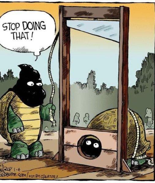 Advantages. turtles have them. asdasdasdasd
