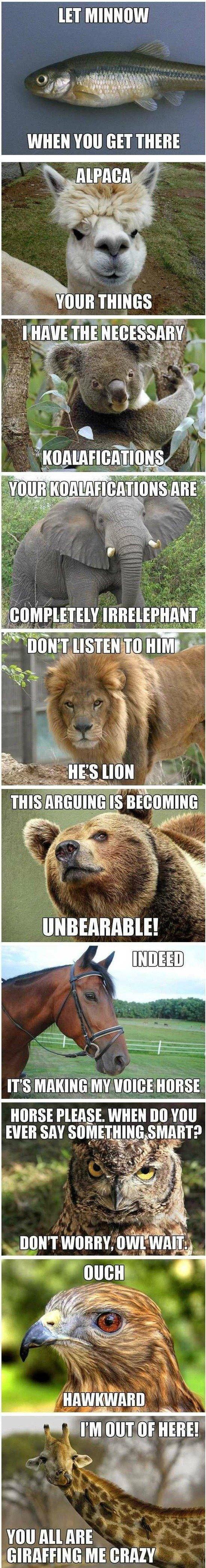 Animal Puns. .