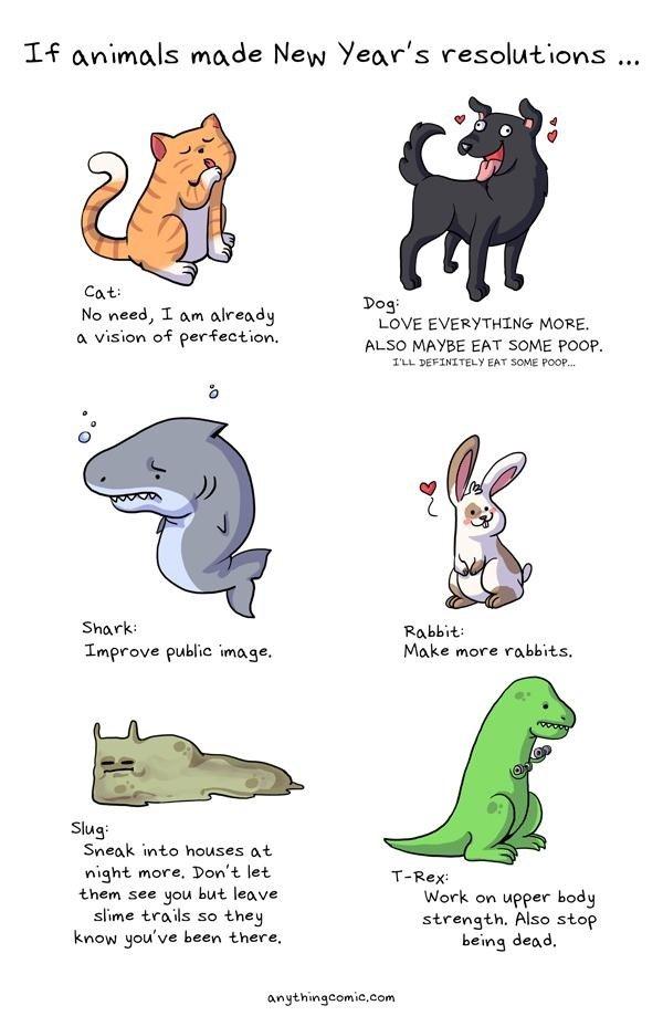 Animals making new year's resolution. . 14 animals made New Year' s resolutions . T am _yle, : - EVERYTHING MORE. ansikte' t . ALSO EAT SOME Poop. Sharks ' Impr
