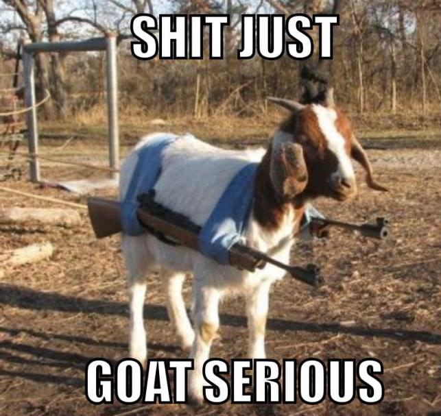 Arab tank. Goatkillerweapon.. Tank destroyed Goats