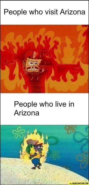 Arizona. . People who visit Arizona. i went to the grand canyon once arizona spongebob