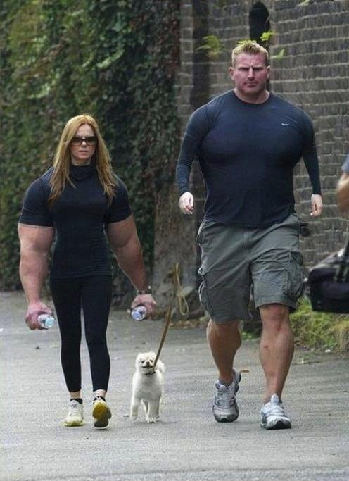 Arm swap. Also, self- walking dog..