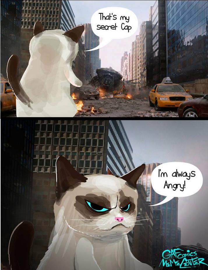 avenger cat. .