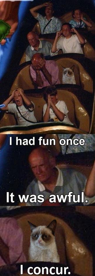 Awful. . I had fun once It was awful. teoria' iur.