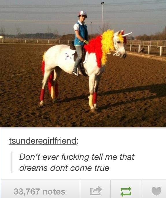 awsome. rapidash= best pony. Den ill ever ref! me that dreams dent come true 33, 76? notes iei