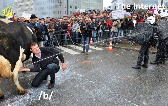 /b/ vs internet. .