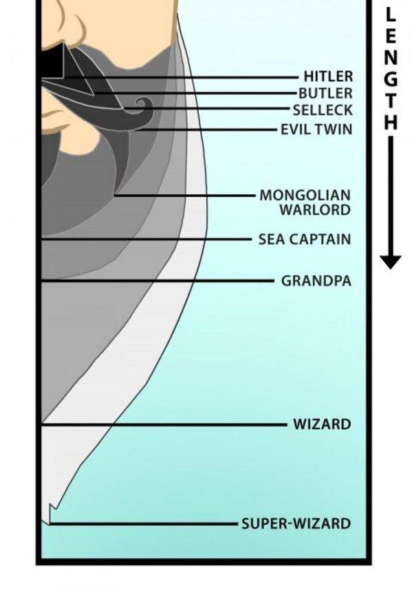 BEARD CHART. Check your beard here........Bitch. Ieu! HITLER BUTLER SELLECK EVIL TWIN MONGOLIAN WARLORD SEA CAPTAIN GRANDPA WIZARD. i believe you forgot zz top