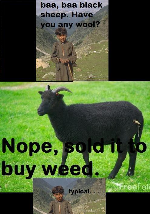 baa baa black sheep. . baa, baa blah:. That's funny. black Sheep