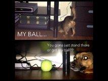 BALL. .