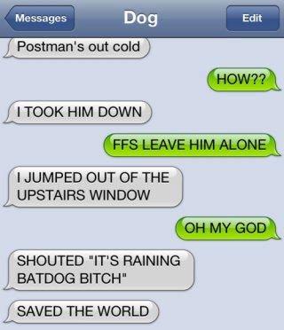 "Batdog!. . I TOOK HIM I JUMPED OUT OF THE WINDOW SHOUTED ""ITS RAMING RAWDOG EFA' ' SAVED THE. I am the hero the Neighbor hood deserves!"