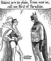 Batman noooooo. his name should be swallow.. NOT AGAIN!!!