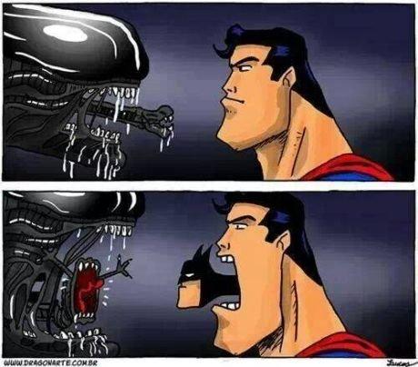 bat..morph...?. .. Heard you were talking . Xenomorph batman Superman funny evolution