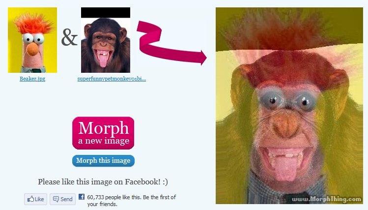 Beaker Monkey morph. .. <know the secret>