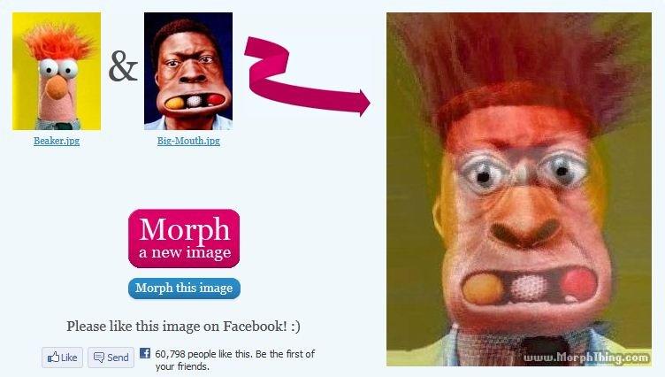 Beaker Big mouth morph. .