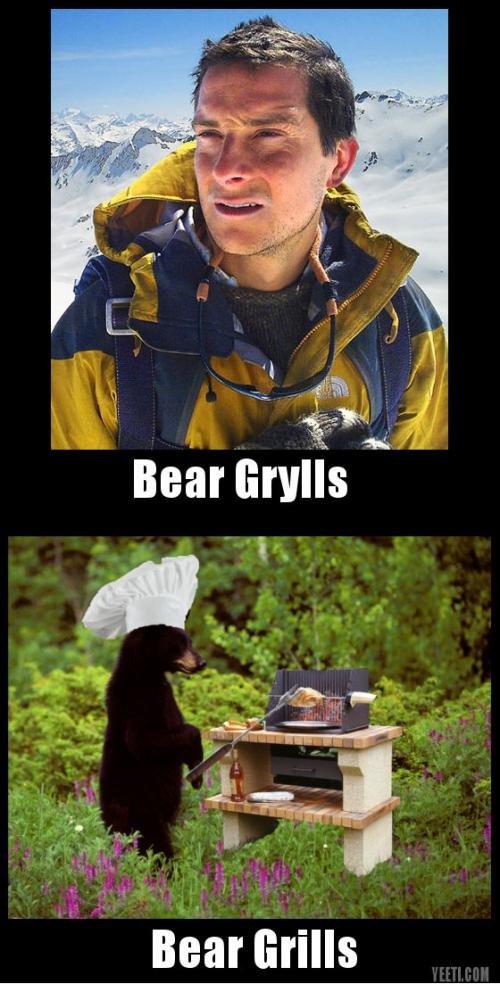 BEAR GRYLLS feat. BEAR. HAHA do you like Bear ?!?!?!. Bear Grylls