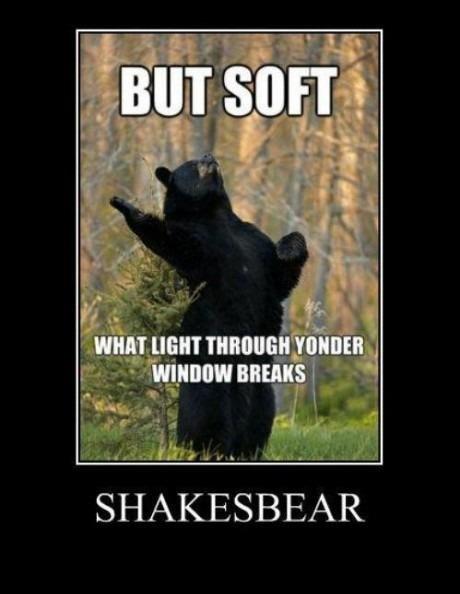 """""""bear"""" with me. description. Itim rrt/ tags"""
