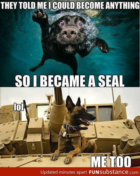 Became a seal. .. Me too