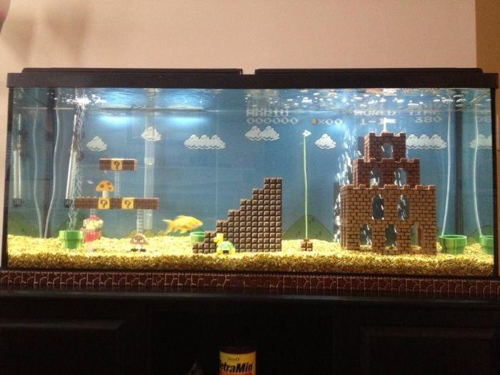 best aquarium ever !. do want !. Parers' it tarr' Pr'
