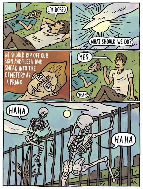 BEST.PRANK.EVA!. HAHA,HAHA. SHEEP. HIT!) THE. WAT... Ha ha ha. haha cemetery best prank