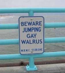 Beware of walruses. lolololololol. beware of walrus