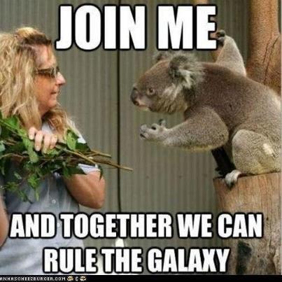 beyond the stars. mongrel kicks u koala. AMI] i, l) Grail' m WE CAN