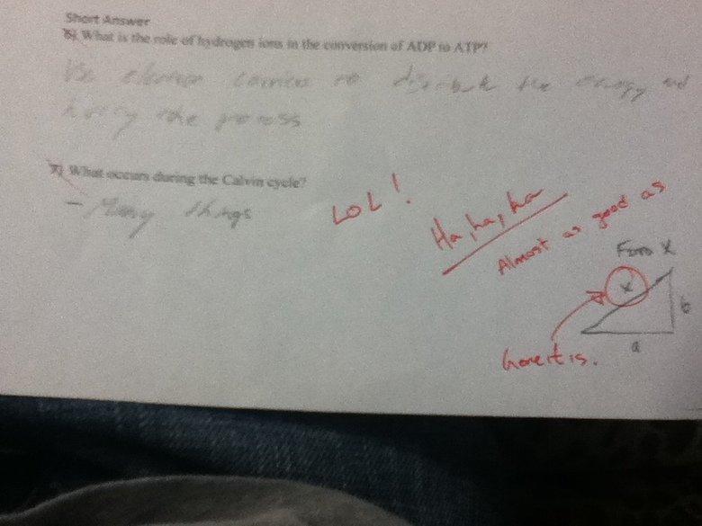 Biology Quiz. My bio teacher is cool ^_^.