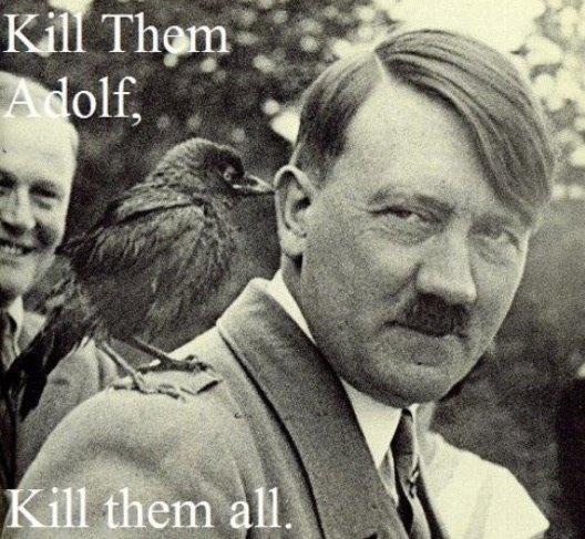 Bird. . Bird adolf hitler
