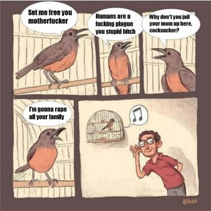 Birdsong. Not mine..