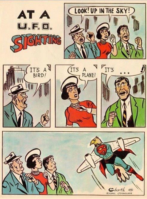 Birplaneman?. .. It`s a bird-plane!