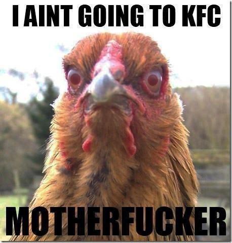 Boycot Chicken. found it.