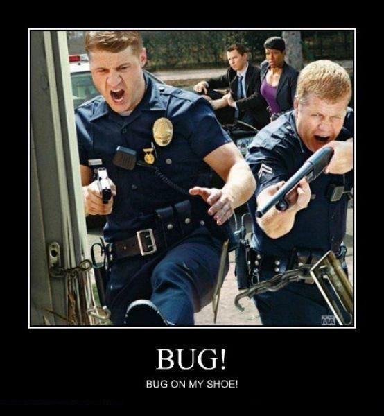 BUG. .. Is that Micheal Cudlitz? games meme Animation gifs top best