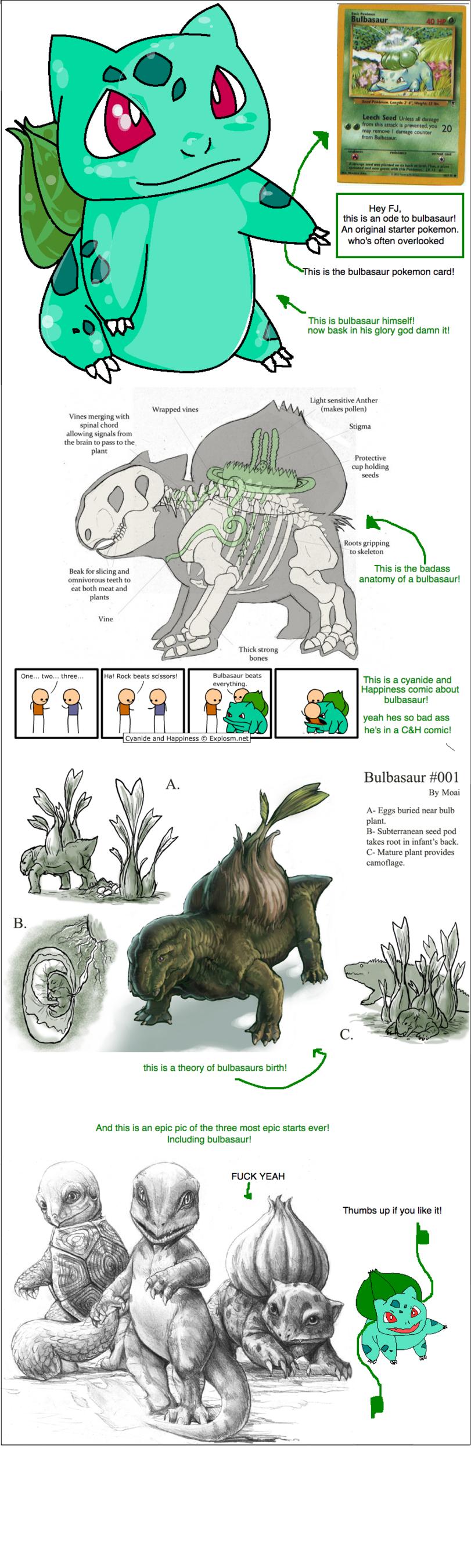 bulbasuar master race. .. Bulbasaur was always my favorite pokemon.