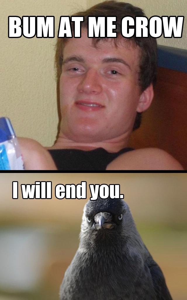 Bum Crow. OC..
