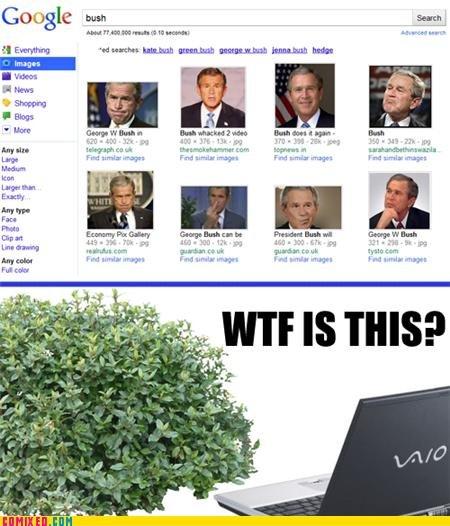 Bush. credit to comixed. Goole bust, mu Hur' Opn Entry liftin- Fan F% tag