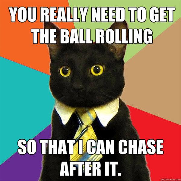 Business cat. . Amen IT.