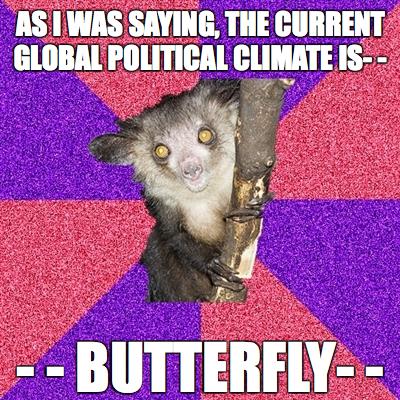 Butterfly. lolwut.