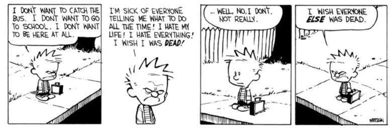 Calvin and Hobbes. . LIFE! I HATE '