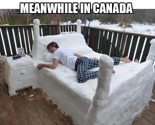 Canada. .. OP's bed.