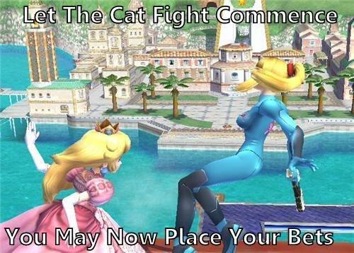 Cat Fight. Let it begin.. WHY NO ZELDA! cat fight