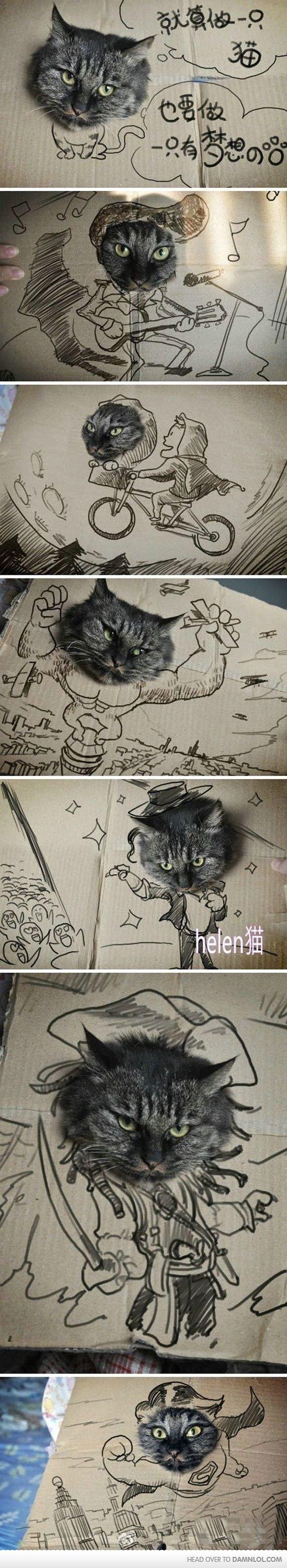 Cats. Cats cats cats cats.