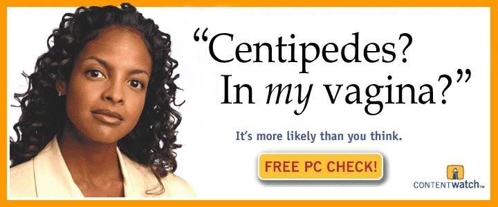 Centipedes_5f8e08_955241.jpg