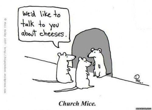 Cheeses. LOL @ bad puns. puns Cheese
